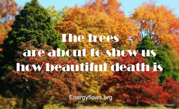 The true meaning of Halloween – Energyflows